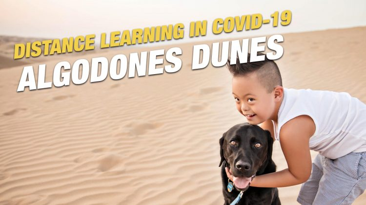 distance learning advantages traveling covid 19